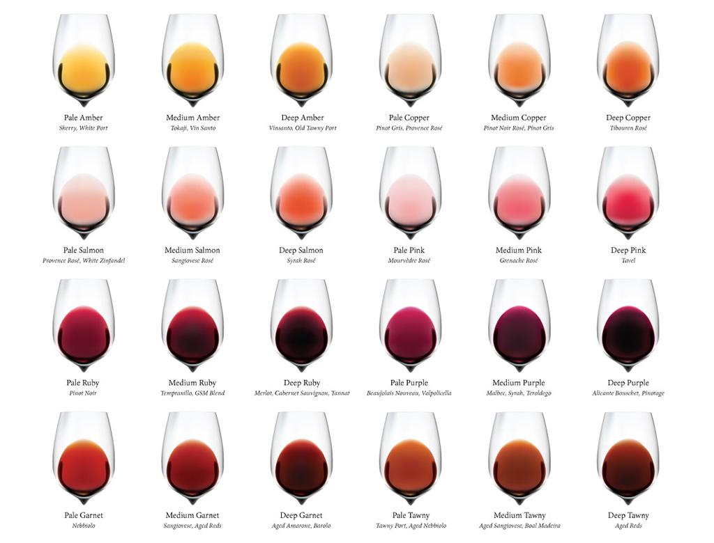 Los colores del vino 2.lecoolvalencia