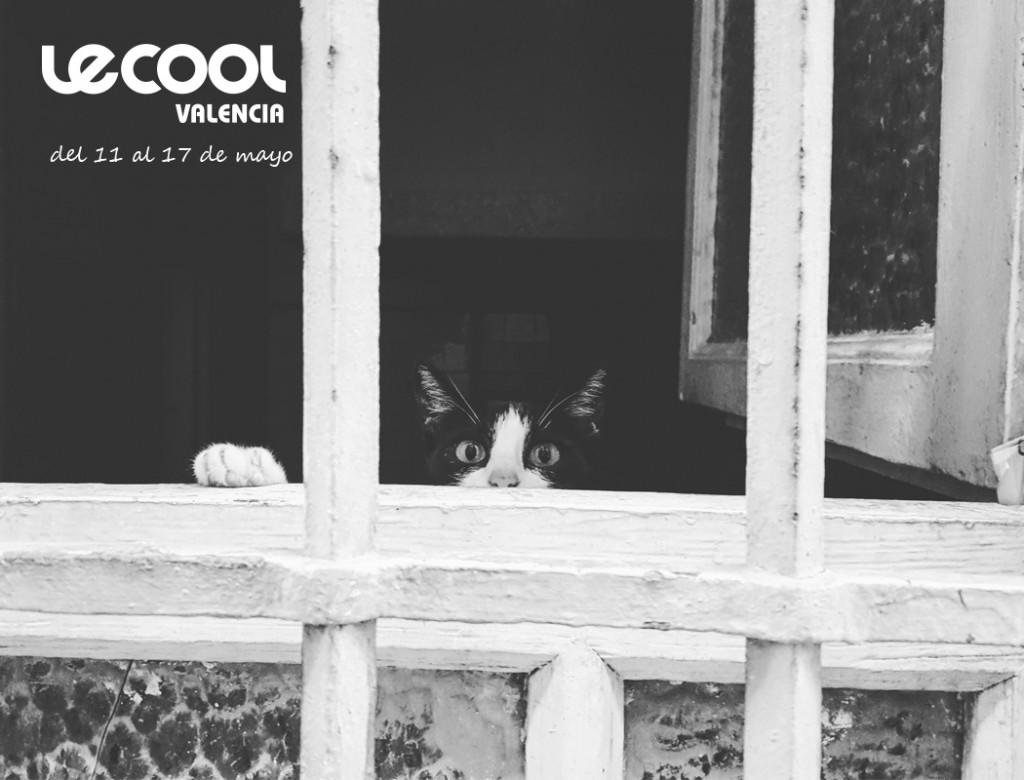 Portada Le Cool 11-17 mayo