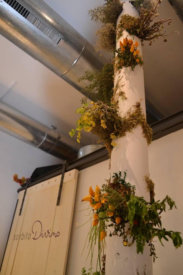 Detalle del jardín vertical de aromáticas. Foto: Arancha Hortal