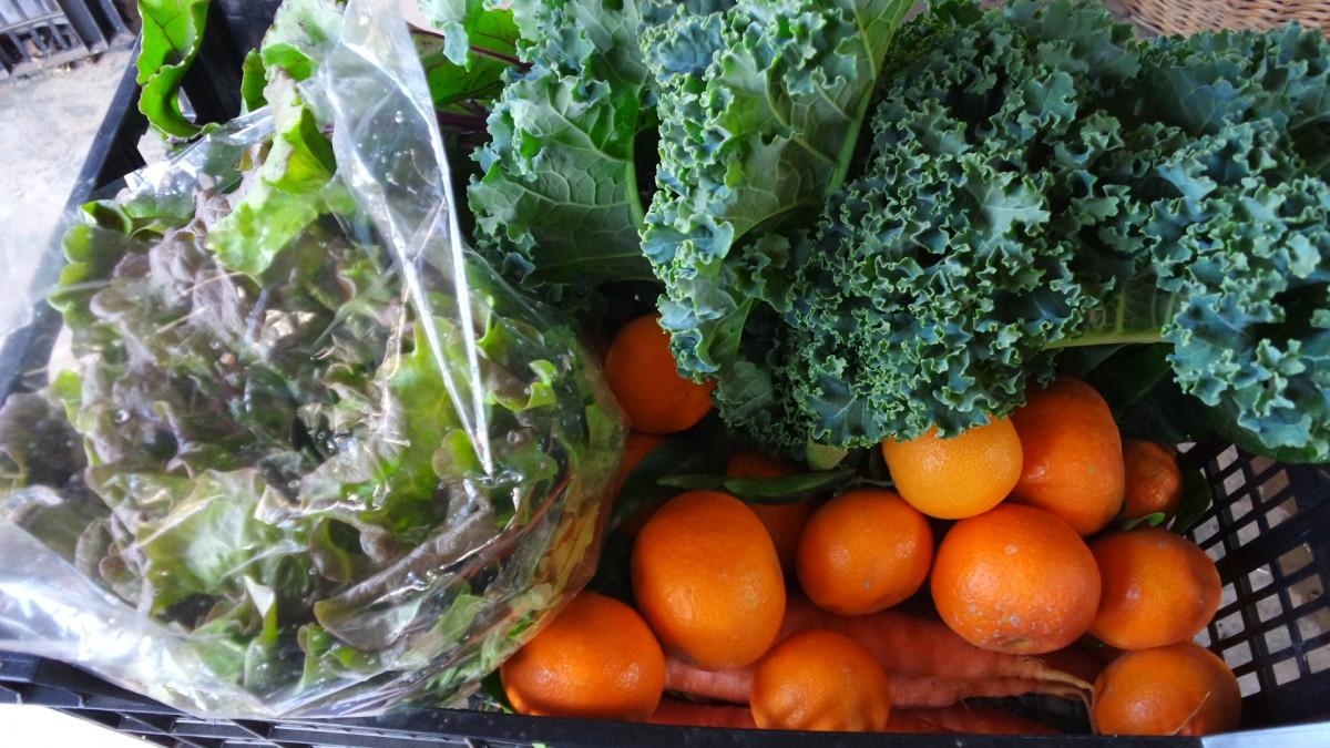 Verdura y fruta de temporada