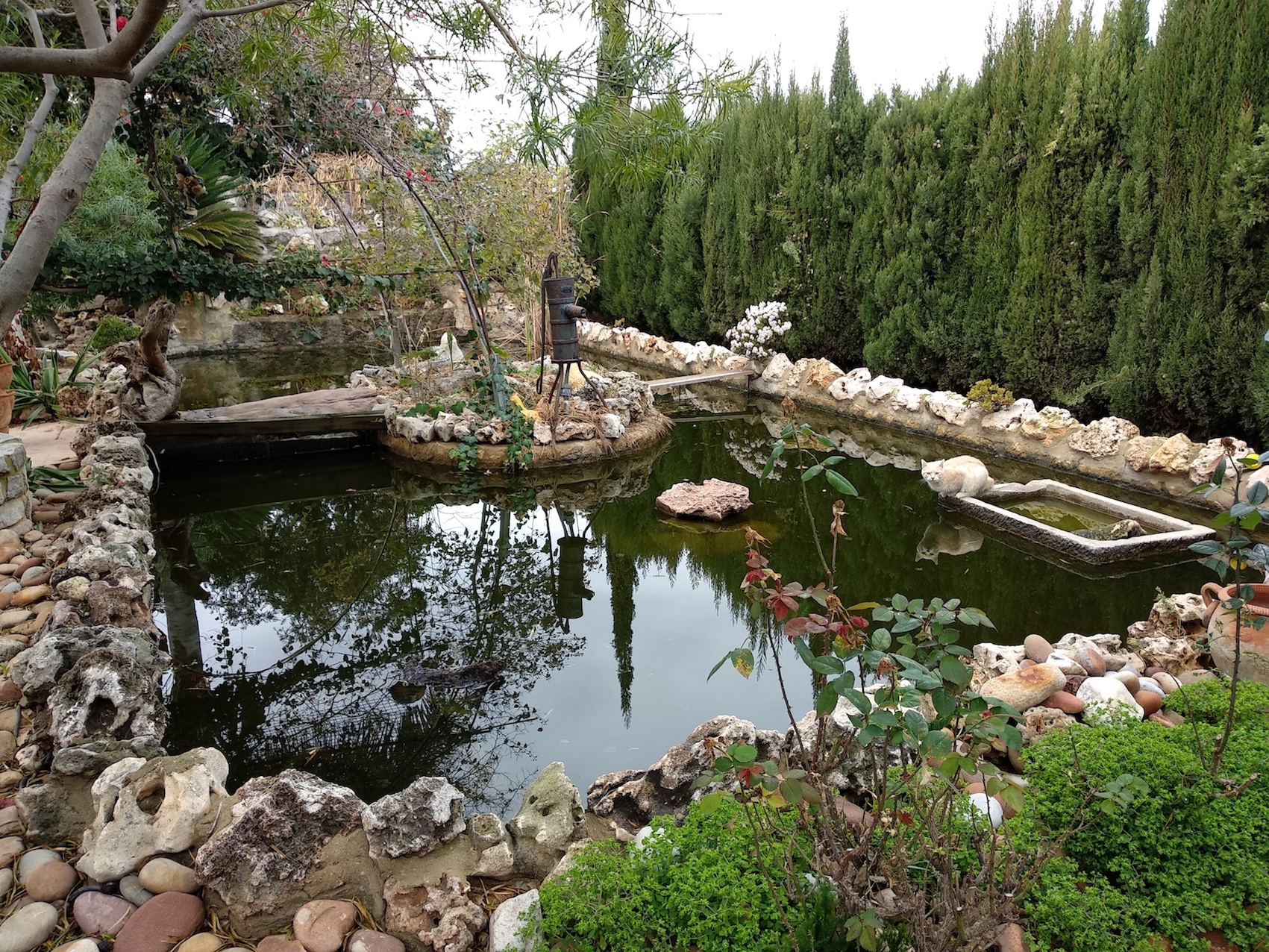 En Villa Mari Luz tienen este estanque y un par de jaulas grandotas con pajaretes de todo tipo, pavo real incluido