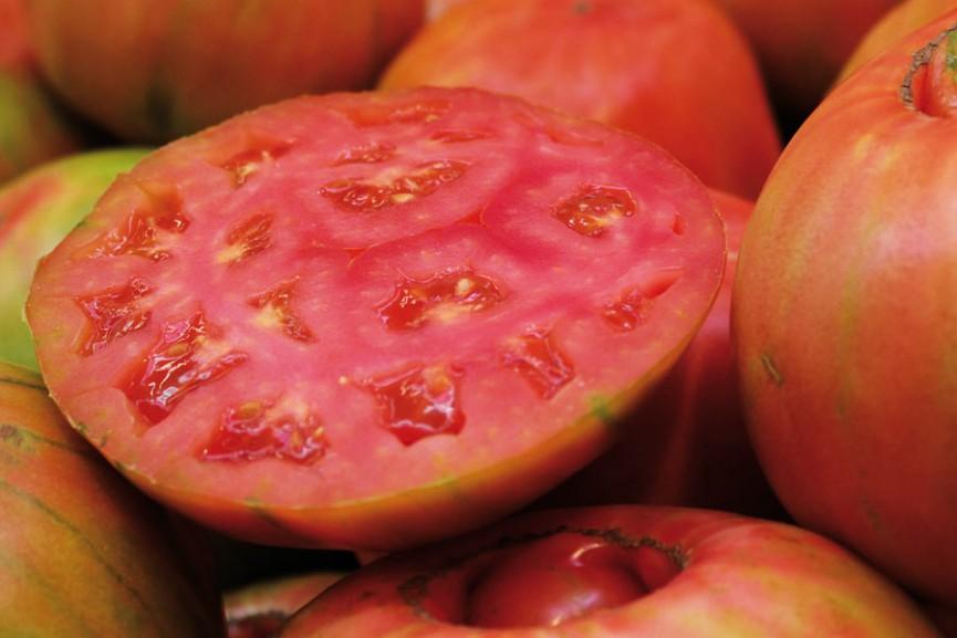 tomates-865x577
